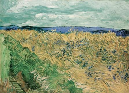 Van Gogh, Wheatfield With Cornflowers, 1890