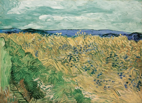 Van Gogh, Wheatfield With Cornflowers, 1890